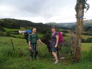 What else would you want to see on the Camino but a donkey?