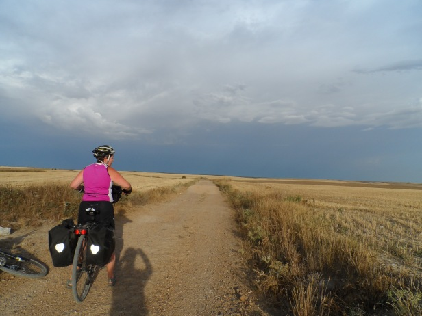 There was a inexplicable beauty on the Meseta